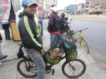 Banana seat bike for transporting limes.